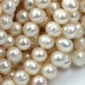 Slatkovodni biseri - Repro-shop.com| Izrada nakita i bižuterije, perle, alke i sav prateći repro materijal | Srbija, Novi Sad